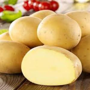 Предлагаю ранний и среднеранний посадочный сортовой картофель