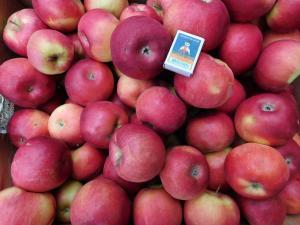 Продам яблука   Айдаред малиновий