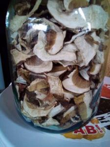 білий гриб Карпатський