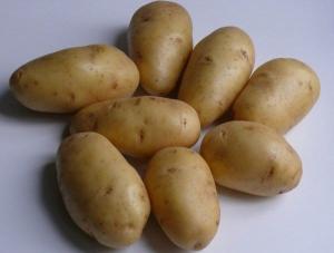 Картофель ранний, среднеранний посадочный: Киранда, Киви, Щедрик и др