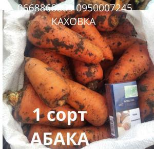 Морковь - Абака