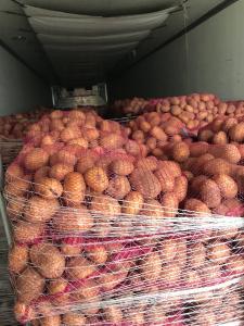 Картопля ОПТ
