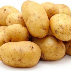 Картопля Ґала та Іноватор