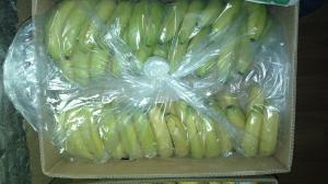 банан 520