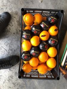 Продам апельсин