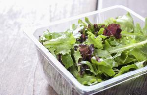 Листя салату європейського походження