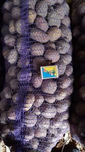 Продам товарный картофель